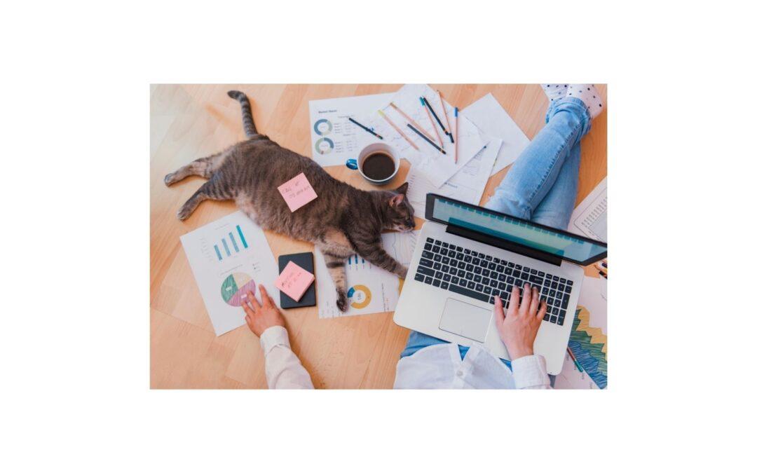 Smart working: progresso o salto nel vuoto?